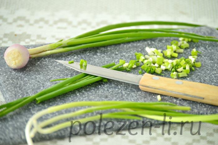Фото зеленого лука, в чем польза зеленого лука