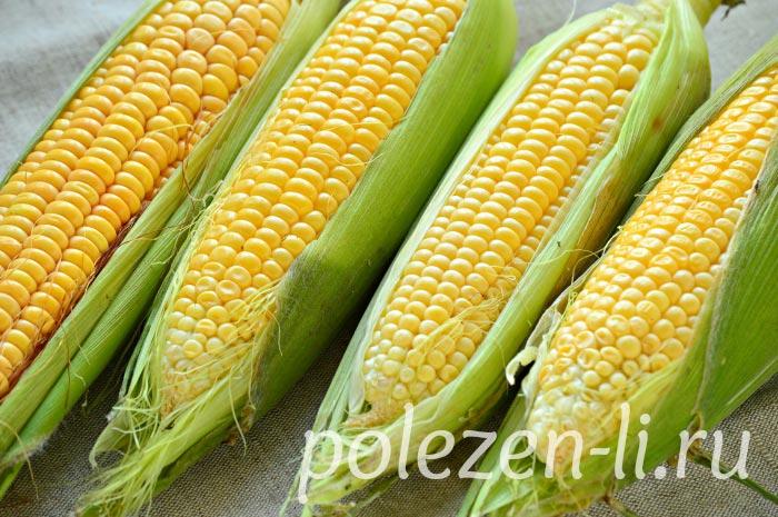 Фото кукурузы плоды