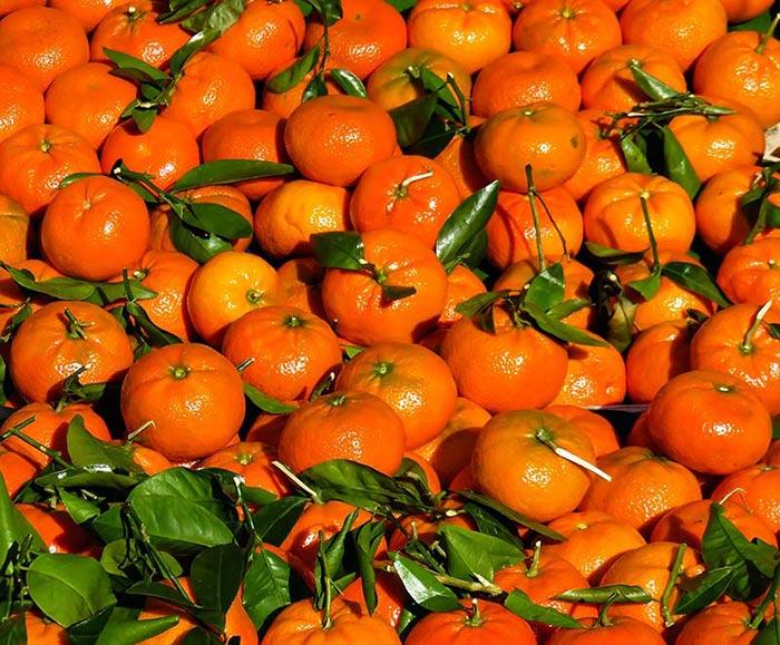 Фото мандаринов с листьями