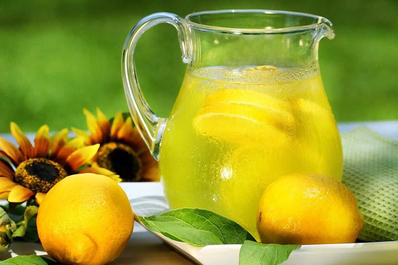 Фото воды с лимоном, полезна ли вода с лимоном