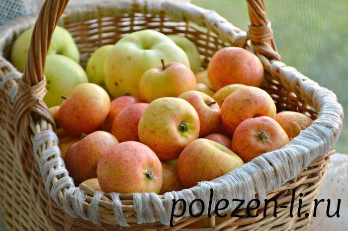 Фото яблок, в чем польза я яблок