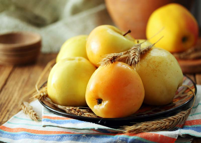 Фото моченных яблок на тарелке