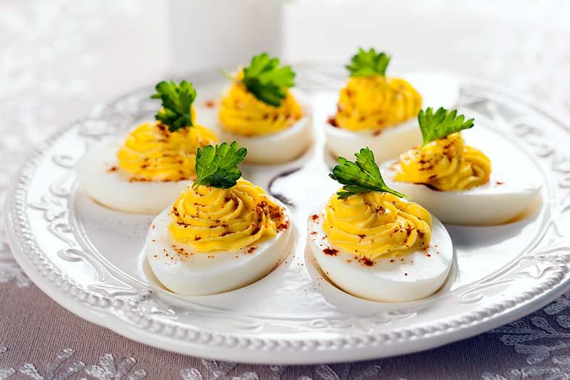 Чем полезны вареные куриные яйца