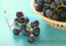 Полезен ли виноград